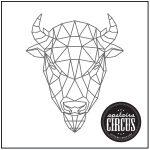 Geo Buffalo Design - Upstairs Circus String Art Kit