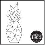 Geo Pineapple Design - Upstairs Circus String Art Kit